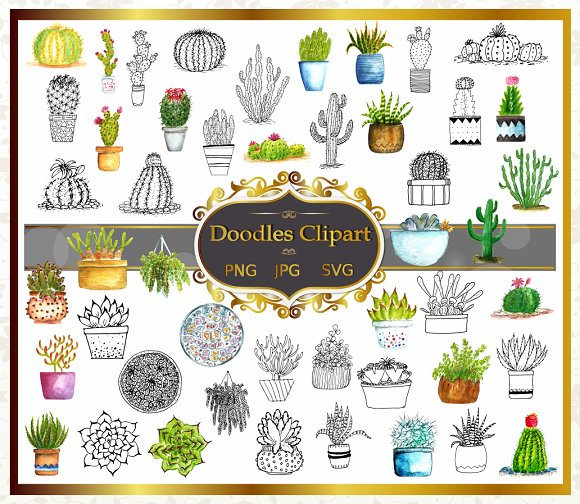 Cactus And Succulents Cliparts