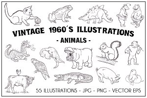 Vintage 1960's Illustrations-Animals