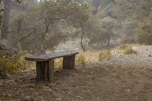 Dreary Bench