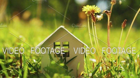 Concept Of Eco Home