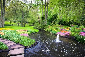 Park with water brook and flowers