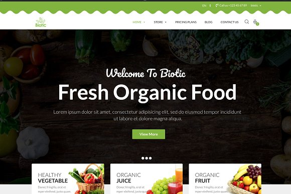 Biotic Organic Food WordPress Theme