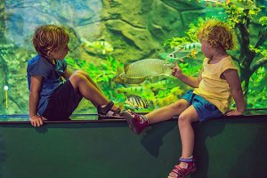 Little Boy and girl watching tropical coral fish in large sea life tank. Kids at the zoo aquarium