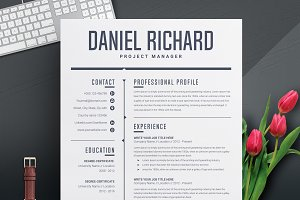 Clean Resume / CV Template