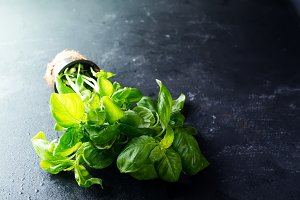 Sweet basil in pot on stone background.