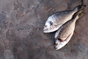 Raw fresh organic dorado or sea bream concrete background.