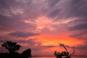 Sunset in the Everglades Florida