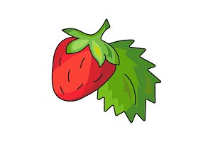 Strawberry vector icon on a white