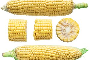 Ear of maize or corn isolated.