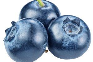 Blueberries. Macro shot.