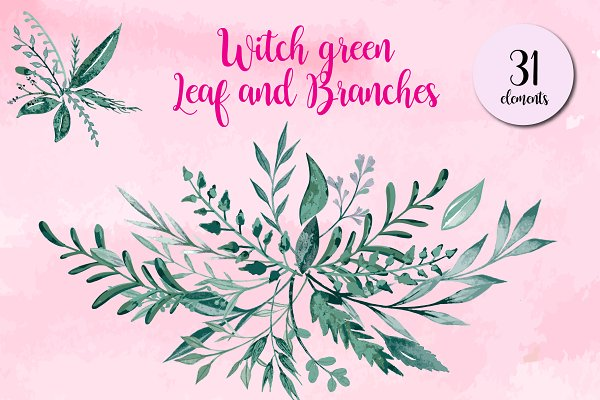 Witch Green Leaf and Branches
