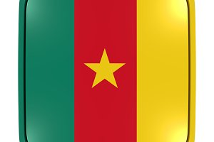 Cameroon icon flag