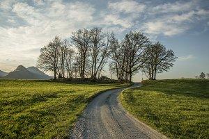 A field path