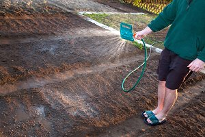 Man cultivating the ground