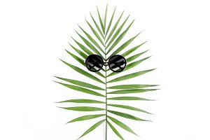 Tropical hipster leaf
