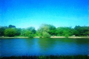 Park pond summer illustration background