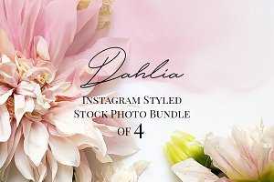Summer Flowers Instagram Bundle