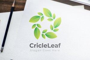 Leaf / Organic / Green