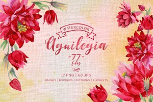 Aguilegia cool flower PNG watercolor