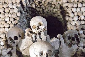 Human Bones Skulls Sedlec Ossuary