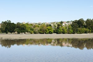 houses and trees reflected on beach