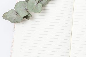 Styled Stock Photo - Open Notebook