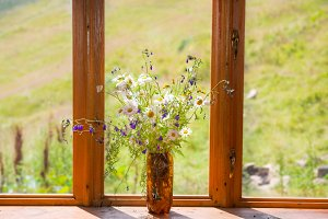 white flowers daisies on wooden sill