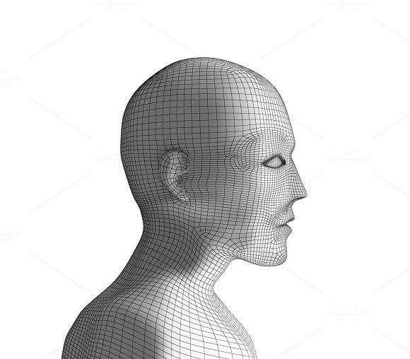 Human Head Wireframe Model On White Artificial Intelligence In Futuristic Technology Concept 3D Illustration