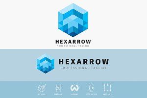 Hexagonal Arrow Logo