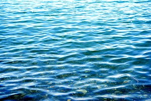 the water in the sea