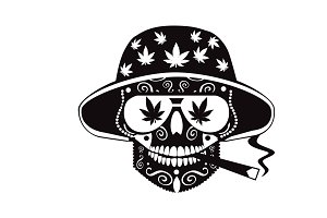 Marijuana skull icon with hat