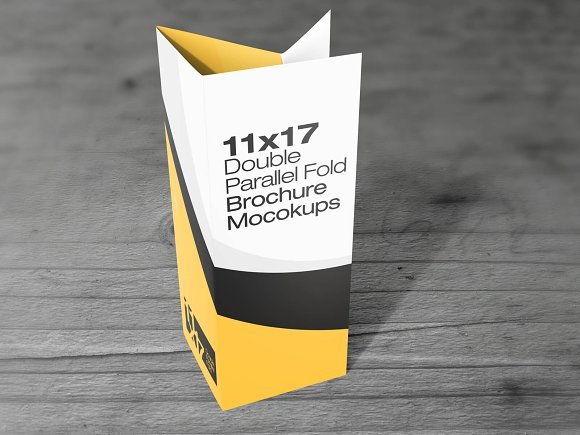 11ЎБ17 Double Parallel Fold Mockups