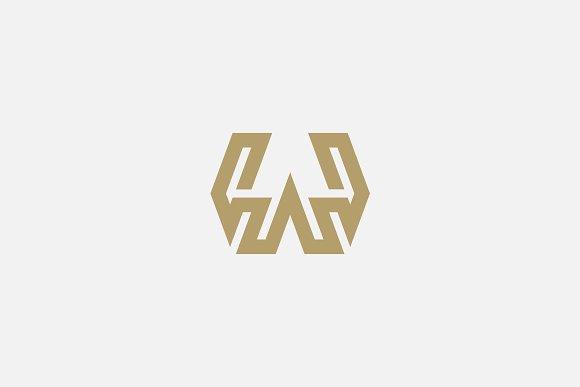 Premium Letter W Logo