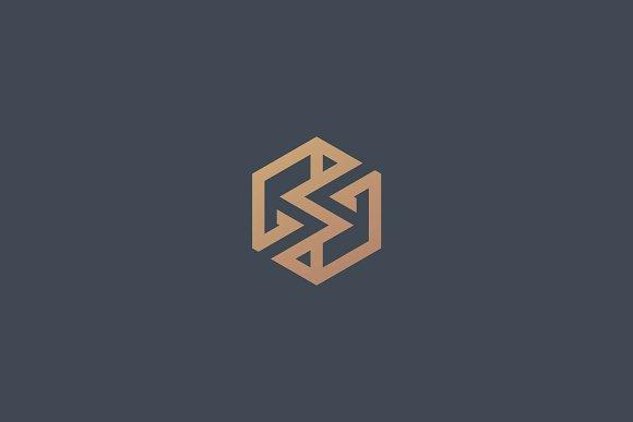 Symmetric Letter S Logo