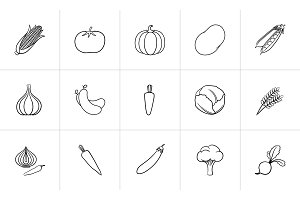 Agriculture food hand drawn sketch icon set.