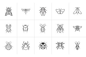 Insects sketch icon set.