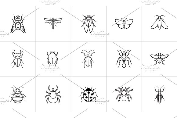 Insects Sketch Icon Set