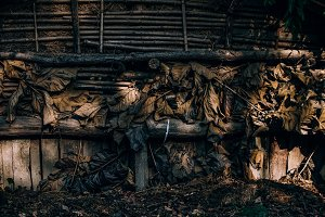 The side of Barn An Animal House