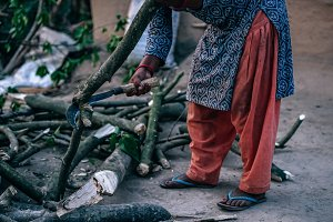 Village Woman Cutting Branch