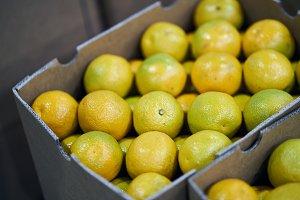 Box full of lemons