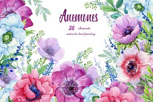 Anemones Watercolor . Flowers Clipar