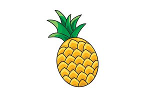 Pineapple vector icon on a white
