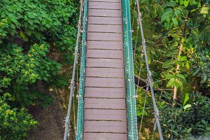 Suspension bridge over the forest in Kuala Lumpur