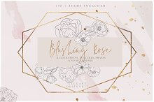 Blush Textures Floral Illustrations