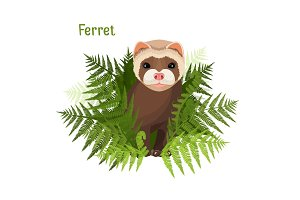 Ferret in green leaves of fern, polecat cute friendly animal