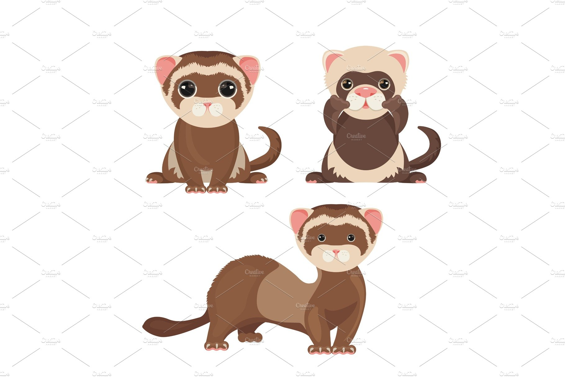 Ferret polecats in cartoon style, funny emoji faces vector
