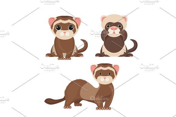 Ferret Polecats In Cartoon Style Funny Emoji Faces Vector