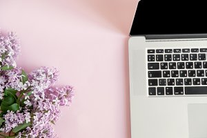 Laptop and lilac flowers on pink background