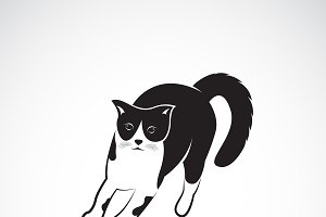 Vector of a cat on white background.