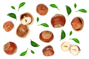 Hazelnuts with leaves isolated on white background. Top view. Flat lay